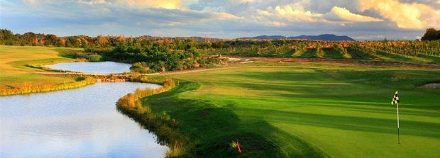 Introductory Golf membership